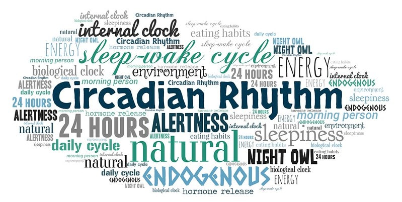 "A word cloud featuring ""Circadian Rhythm"". interesting facts about basketball"